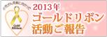 2013年ゴールドリボン活動のご報告